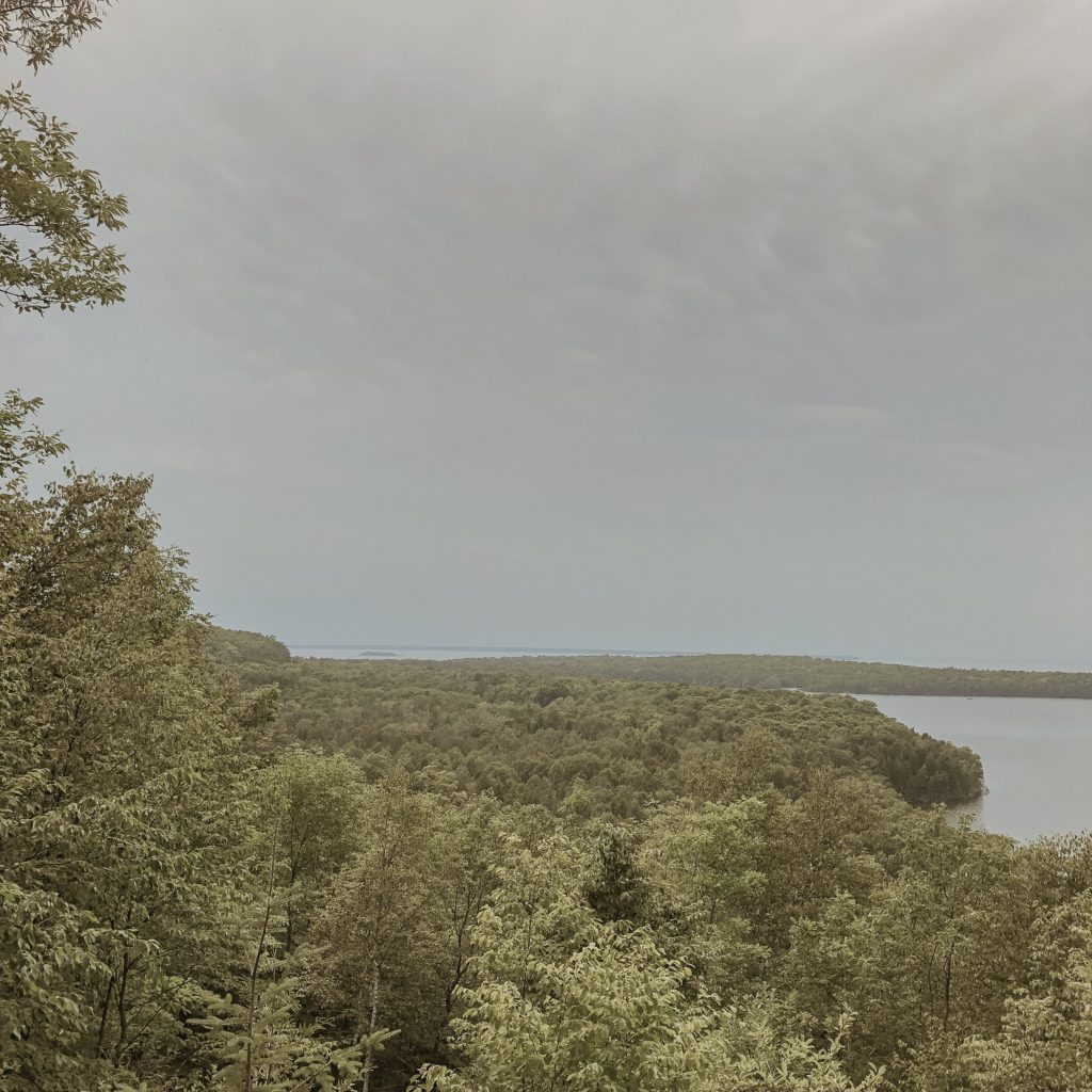 view of the tree line in peninsula state park